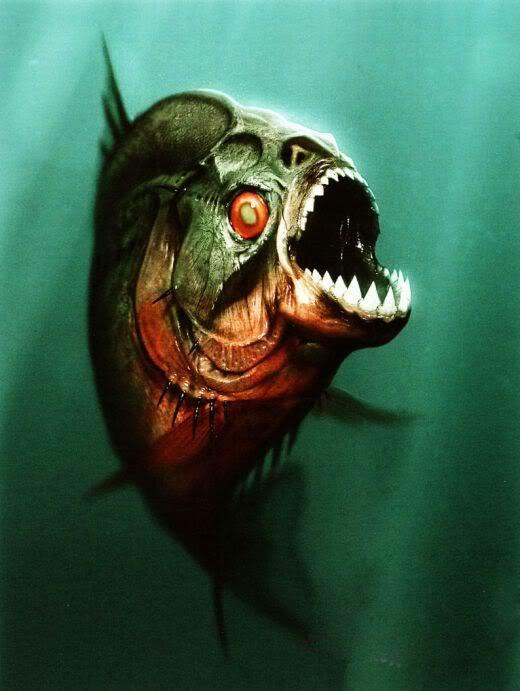 Piranha - Bild 1 von 1