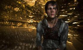 Maze Runner - Die Auserwählten im Labyrinth mit Dylan O'Brien - Bild 46
