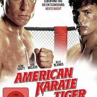 Karate Tiger 3 Stream