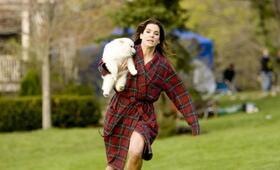 Selbst ist die Braut mit Sandra Bullock - Bild 16