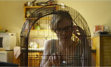 Die fast perfekte Welt der Pauline mit Isabelle Carré - Bild 8