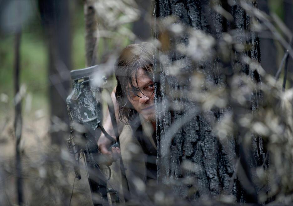 Walking Dead Staffel 7 Dvd
