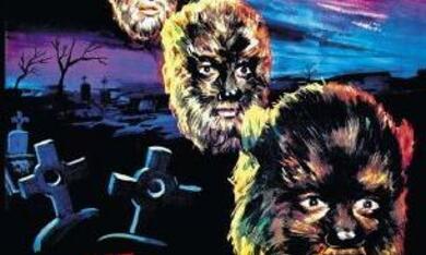 Die Todeskralle des grausamen Wolfes - Bild 1