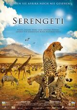 Serengeti - Poster