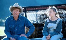 Der Pferdeflüsterer mit Scarlett Johansson und Robert Redford - Bild 52