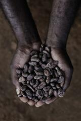 Über den Inseln Afrikas – Sao Tome und Principe - Poster