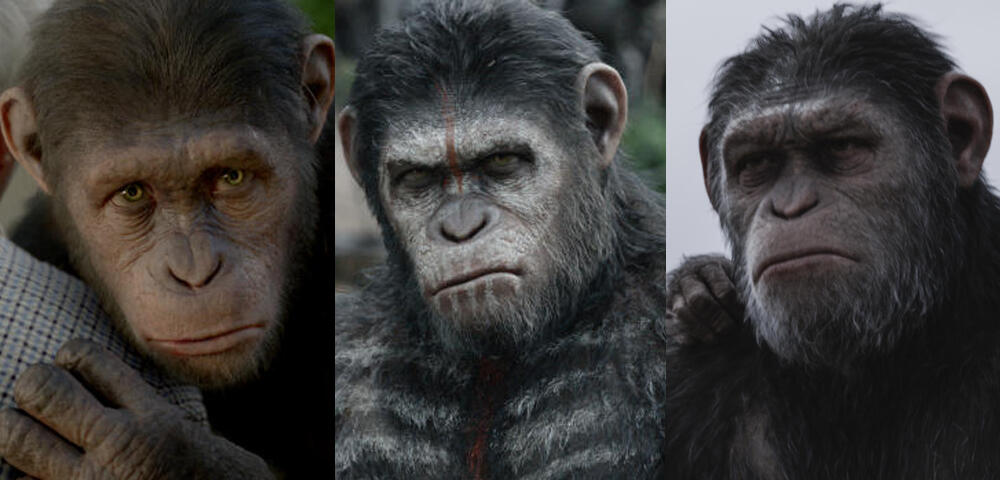 Planet Der Affen Revolution Stream Mit Untertitel