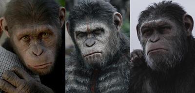 Planet der Affen: Prevolution/Planet der Affen: Revolution/Planet der Affen: Survival