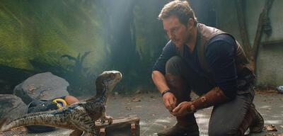 Ein kleiner Dino und Chris Pratt in Jurassic World: Das gefallene Königreich