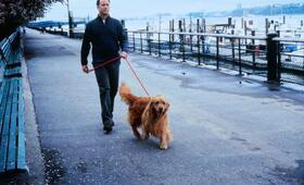 e-m@il für Dich mit Tom Hanks - Bild 20