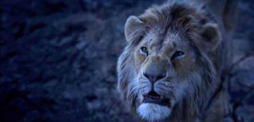 Der König der Löwen 2019: Simba als Erwachsener