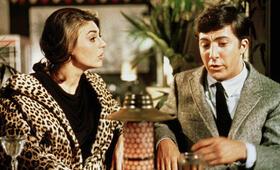 Die Reifeprüfung mit Dustin Hoffman und Anne Bancroft - Bild 12