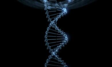 Helix - Es ist in Deiner DNA - Bild 7