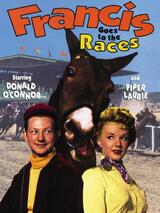 Francis Goes to the Races - Poster