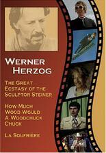 How much Wood would a Woodchuck chuck... - Beobachtungen zu einer neuen Sprache