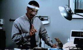 Dr. Dolittle mit Eddie Murphy - Bild 5