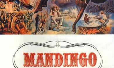 Mandingo - Bild 12