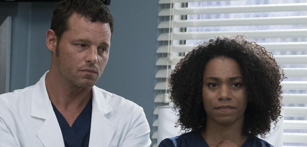 Grey\'s Anatomy startet eigene Web-Serie zur 14. Staffel News ...