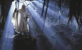 Der Herr der Ringe: Die zwei Türme mit Ian McKellen, Viggo Mortensen und Orlando Bloom - Bild 15