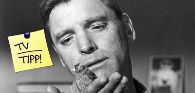 Burt Lancaster als Ornithologe in Alcatraz