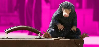 Der Niffler in Phantastische Tierwesen 2
