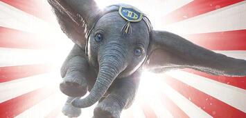 Bild zu:  Dumbo