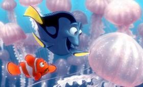 Findet Nemo - Bild 10