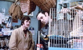 Monty Pythons wunderbare Welt der Schwerkraft - Bild 5