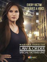 Law & Order: New York - Staffel 22 - Poster