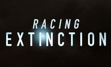 Racing Extinction - Bild 4