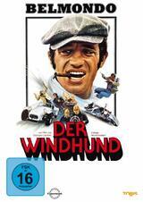 Der Windhund - Poster