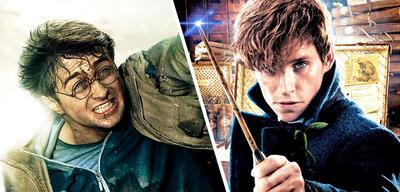 Harry Potter undNewt Scamander