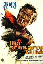 Der schwarze Falke Poster