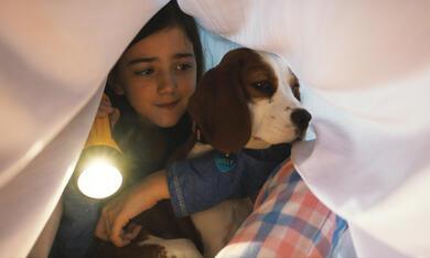 Bailey - Ein Hund kehrt zurück mit Abby Ryder Fortson - Bild 2