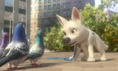 Bolt - Ein Hund für alle Fälle - Bild 10