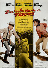 Zwei tolle Kerle in Texas - Poster