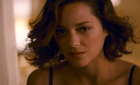Inception mit Marion Cotillard - Bild 66