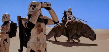 Bild zu:  Auf der Suche nach dem Star Wars Set