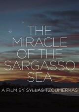 Das Wunder im Meer von Sargasso - Poster