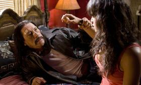 Machete mit Danny Trejo und Michelle Rodriguez - Bild 39