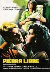Das Versteckspiel - Poster