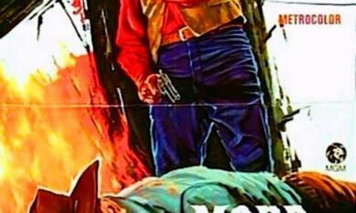 Mordbrenner von Arkansas - Bild 1