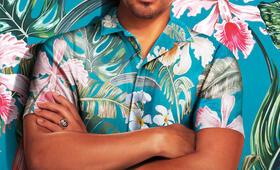 Magnum P.I., Magnum P.I. - Staffel 1 mit Jay Hernandez - Bild 24