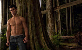 Taylor Lautner - Bild 42