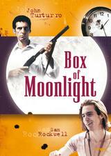 Box of Moonlight - Poster