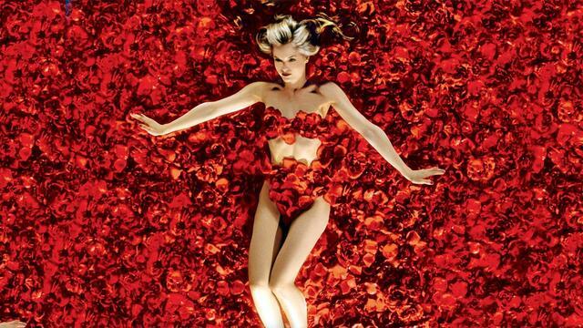 Bild zu American Beauty - Eine Liebeserklärung