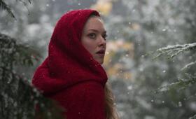 Red Riding Hood - Unter dem Wolfsmond mit Amanda Seyfried - Bild 2