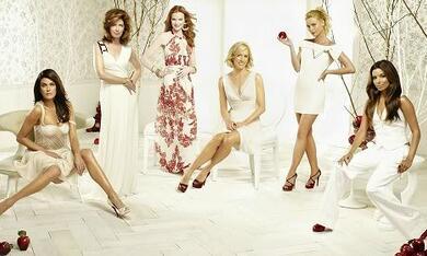 Desperate Housewives mit Eva Longoria - Bild 10