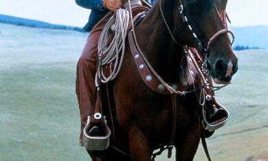 Der Pferdeflüsterer mit Robert Redford - Bild 4