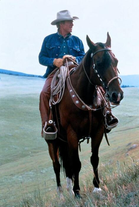 Der Pferdeflüsterer mit Robert Redford